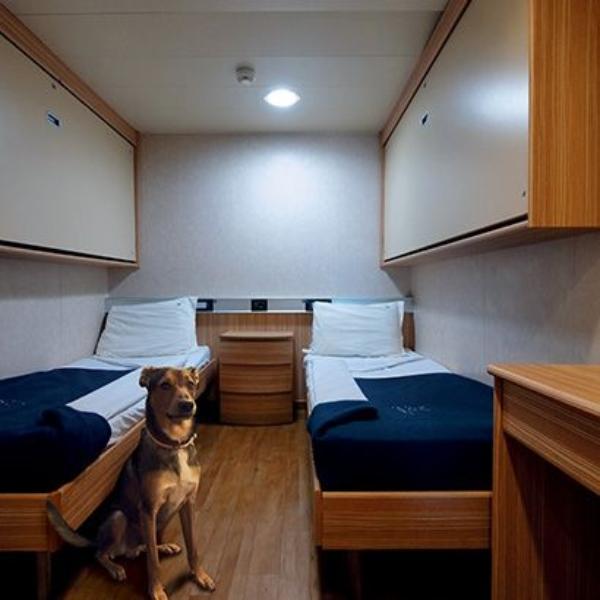 Passenger/Ro-Ro Florencia Pet cabin